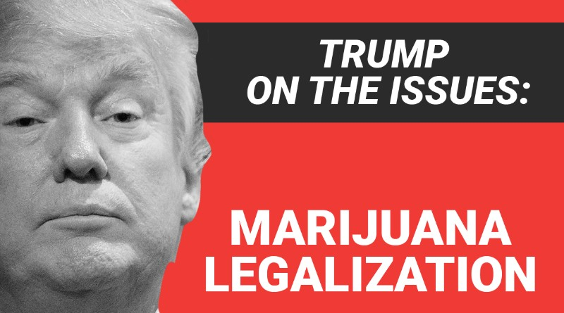 Here's where President-elect Donald Trump stands on marijuana legalization